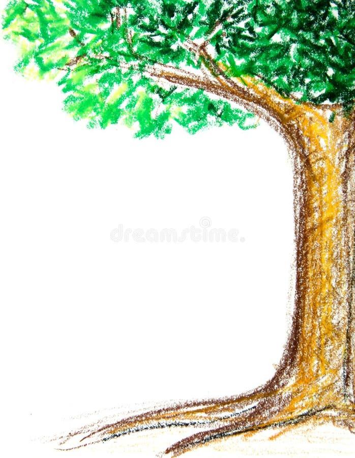 Baum-Zeichnung mit Zeichenstift stockbilder
