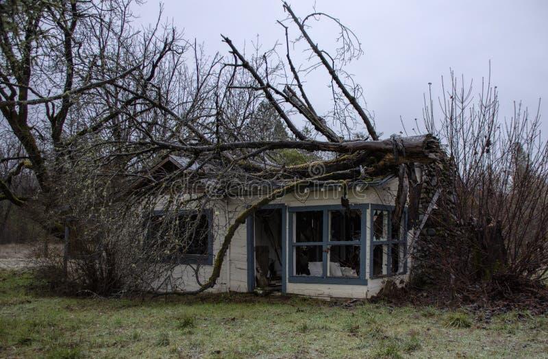 Baum zerstört ein Haus in Wolf Creek, Oregon stockfotos