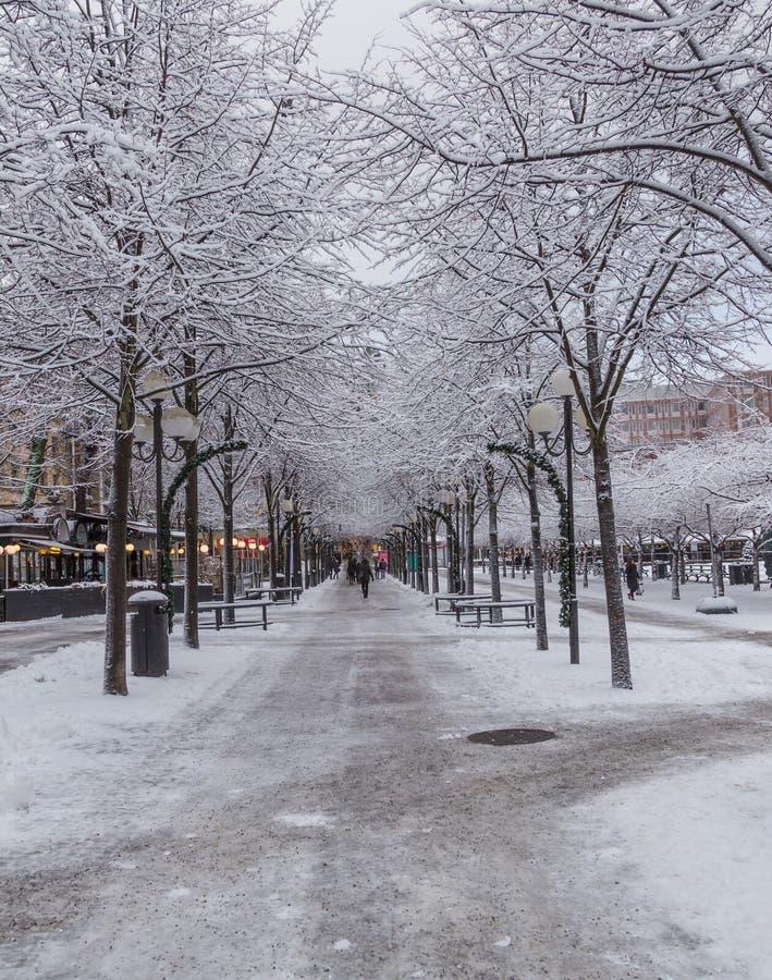Baumgasse bei Kungsträdgården mitten in Stockholm-Stadt an einem schneebedeckten Tag, Schweden lizenzfreie stockfotos