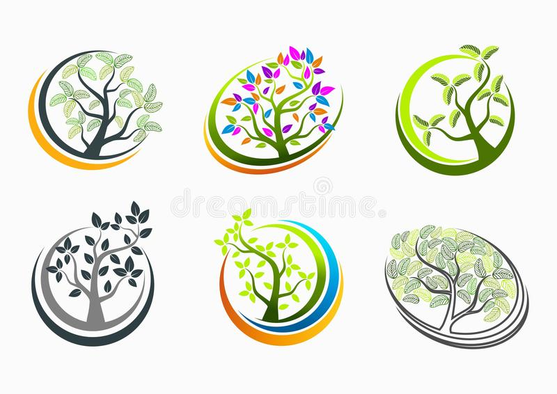 Baumgesundheits-, -logo-, -natur-, -badekurort-, -zeichen-, -massage-, -ikonen-, -betriebs-, -symbol-, -yoga- und -wachstumsbildu vektor abbildung