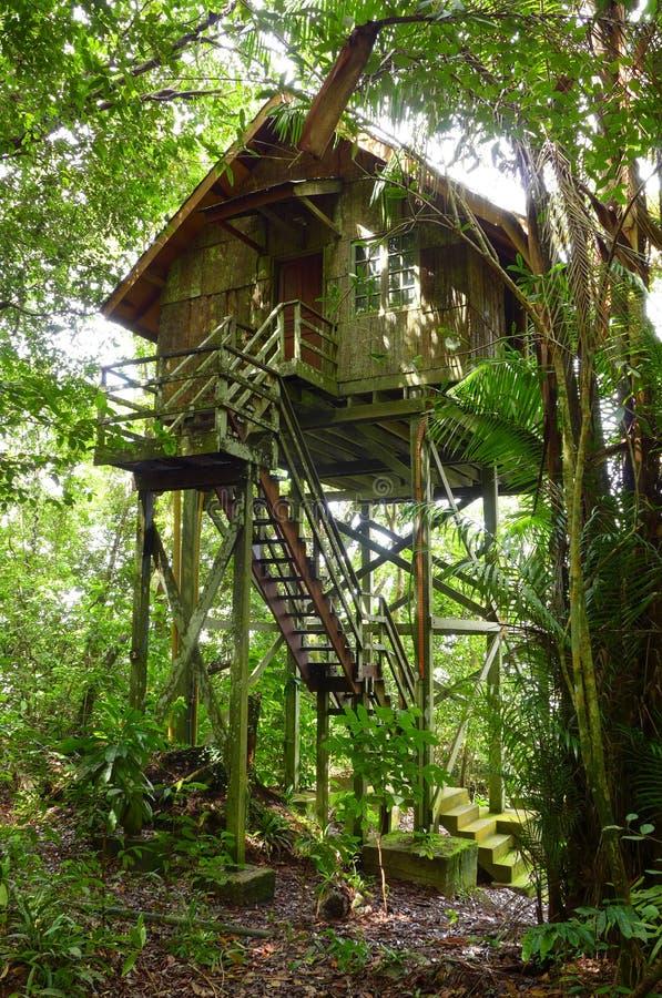 Baumhaus, eco Tourismusrücksortierung lizenzfreies stockfoto