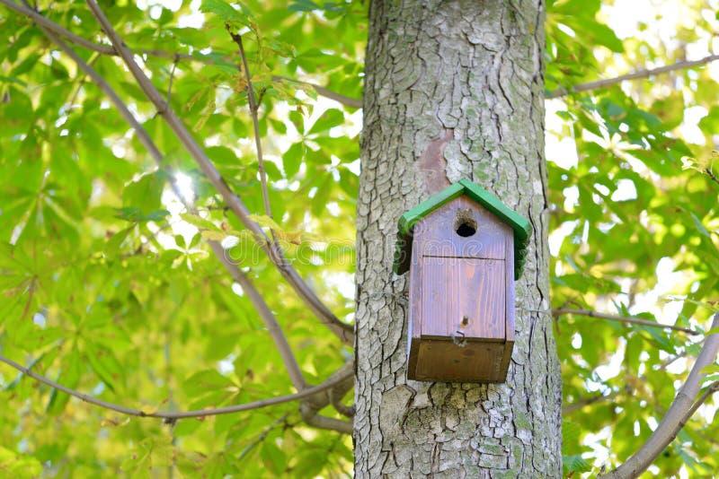 Baumhaus für Vögel lizenzfreie stockfotografie