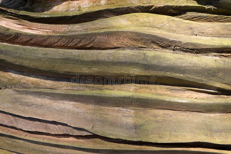 Baumkabel stockfotos