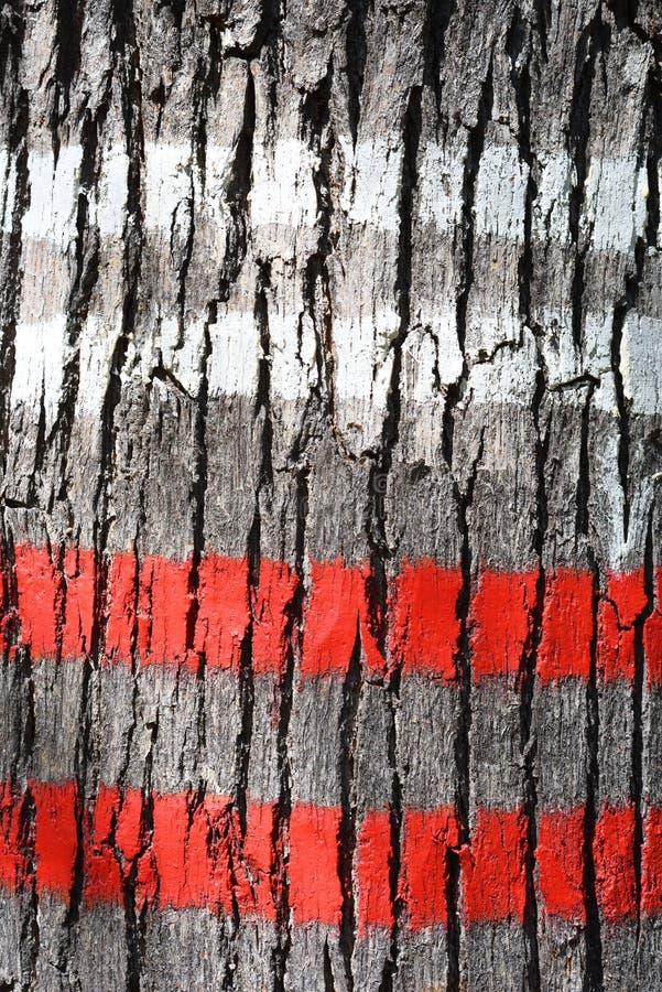 Baumrinde markiert mit roter und weißer Farbe lizenzfreie stockbilder