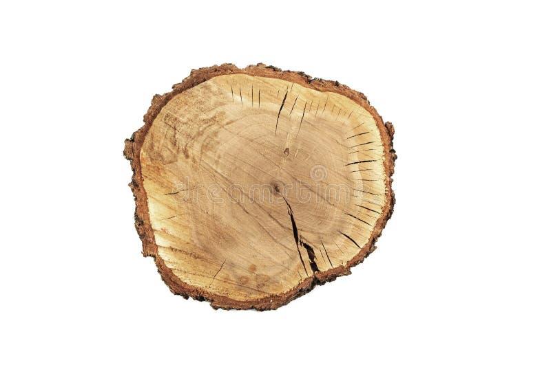 Baumscheibenquerschnitt mit Baumringen, die das Alter eines organischer Hintergrund lokalisierten Stumpfkreises zeigen, kreist da stockfotos