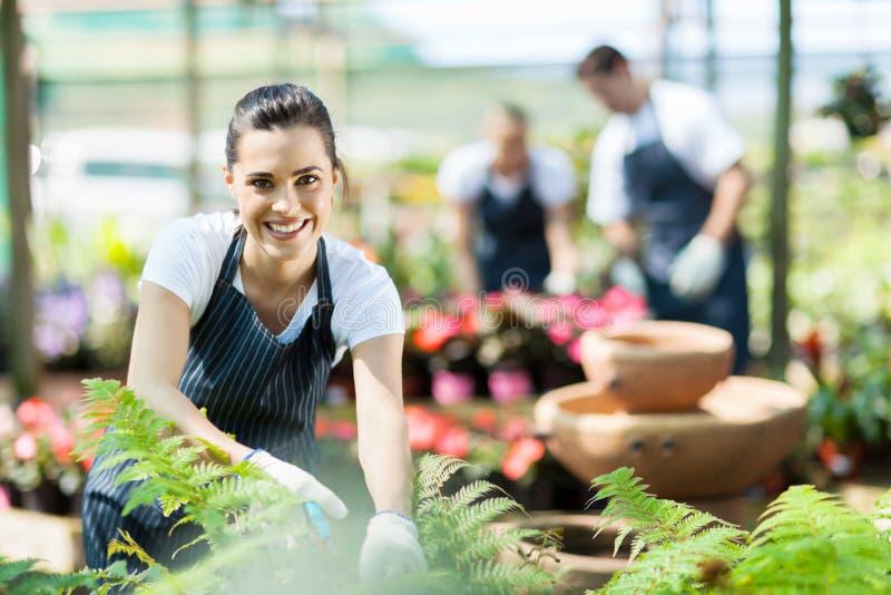 Baumschulenarbeitskraft im Gewächshaus stockfoto