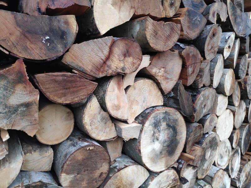 Baumstämme gestapelt - Brauntöne lizenzfreies stockfoto