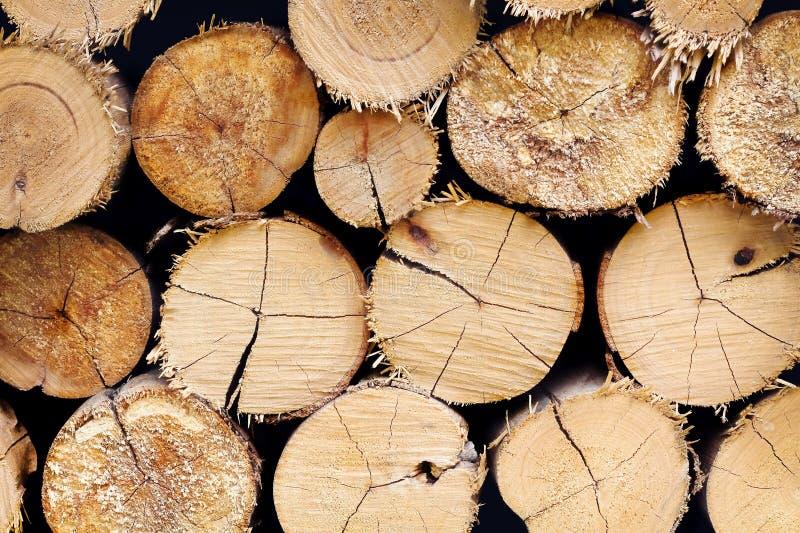Baumstümpfe Hintergrund, Zusammenfassung des Holzes zeichnet Beschaffenheit auf stockbild