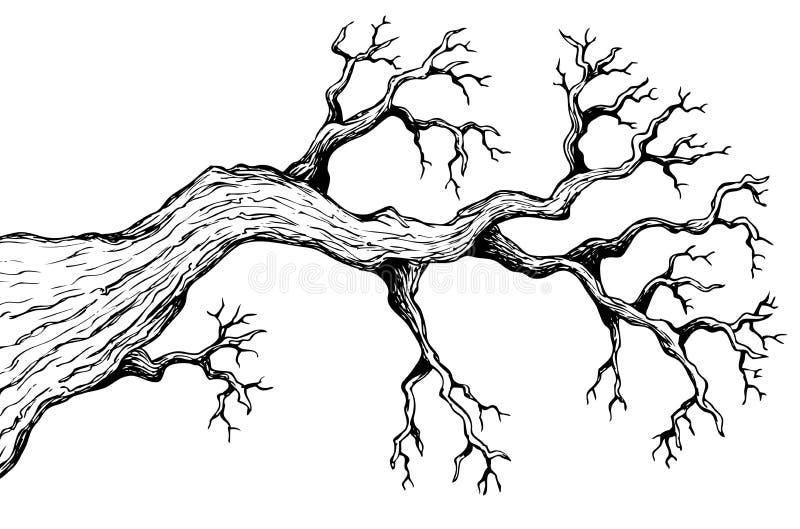 Baumthema, das 3 zeichnet lizenzfreie abbildung