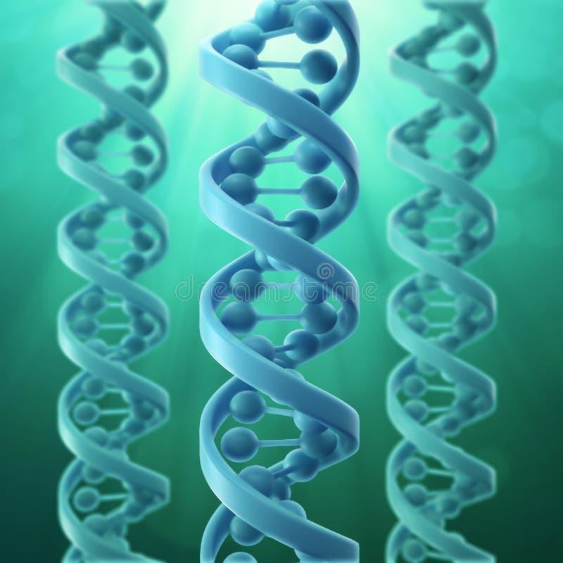 Baumuster 3D eines DNA-Stranges lizenzfreie abbildung