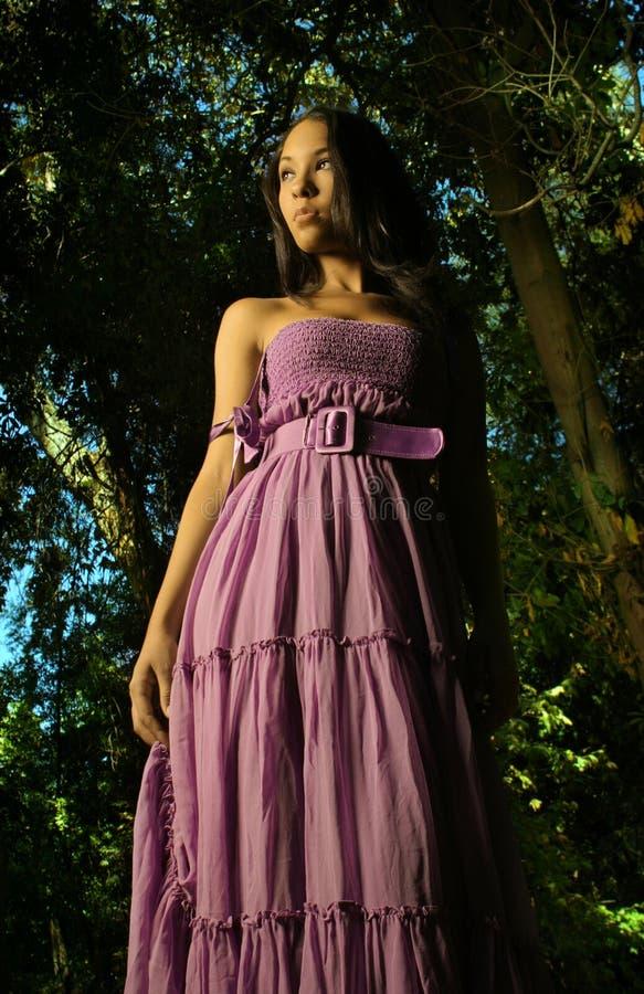 Baumuster im purpurroten Kleid lizenzfreie stockfotos
