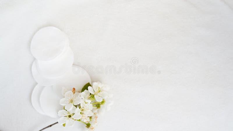 Baumwollauflagen und -blume auf wei?em Hintergrund mit Kopienraum Hautk?rperpflege Konzept lizenzfreies stockfoto