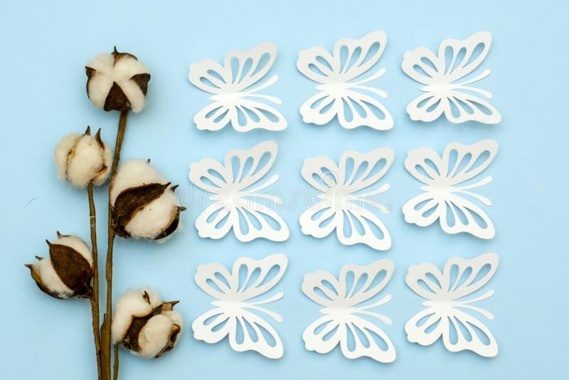Baumwollniederlassung und empfindliche Frühlingsschmetterlinge gemacht vom Weißbuch lizenzfreie stockbilder