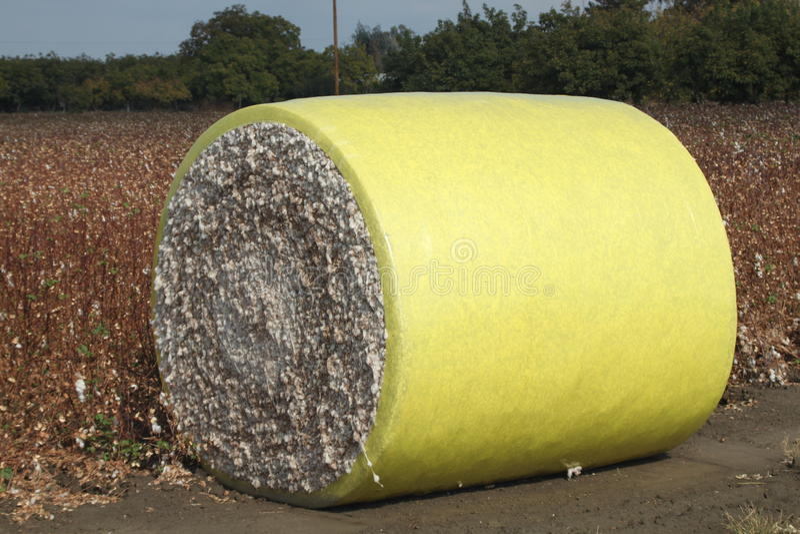 Baumwollrolle lizenzfreies stockfoto