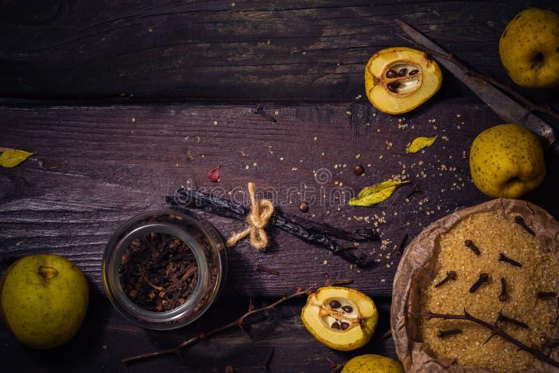 Baunilha w dos cravos-da-índia do açúcar do marmelo dos galhos dos frutos das tinturas dos ingredientes foto de stock royalty free