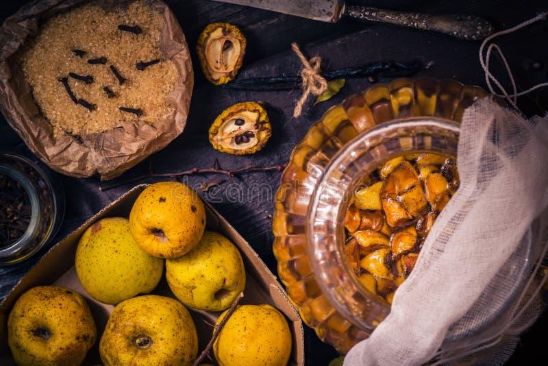 Baunilha w dos cravos-da-índia do açúcar do marmelo dos galhos dos frutos das tinturas dos ingredientes foto de stock
