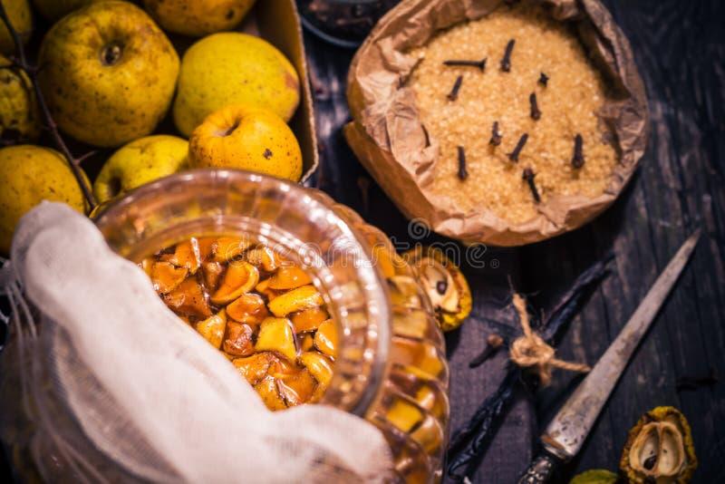 Baunilha w dos cravos-da-índia do açúcar do marmelo dos galhos dos frutos das tinturas dos ingredientes fotos de stock royalty free
