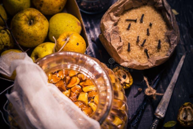 Baunilha w dos cravos-da-índia do açúcar do marmelo dos galhos dos frutos das tinturas dos ingredientes imagens de stock
