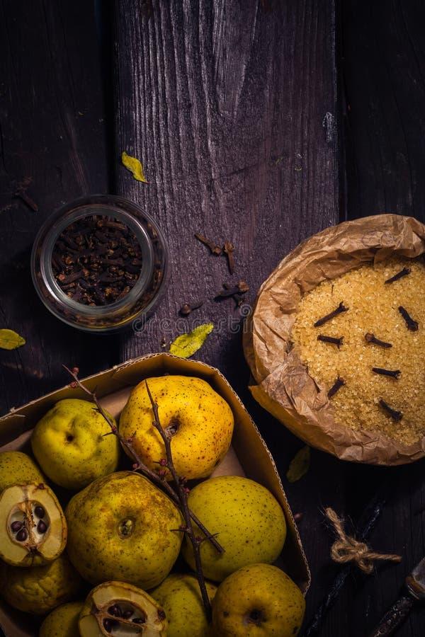 Baunilha w dos cravos-da-índia do açúcar do marmelo dos galhos dos frutos das tinturas dos ingredientes imagem de stock royalty free