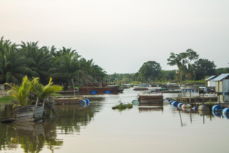 Bauty da província de Riau do estado de Buluh Cina Kampar imagem de stock royalty free