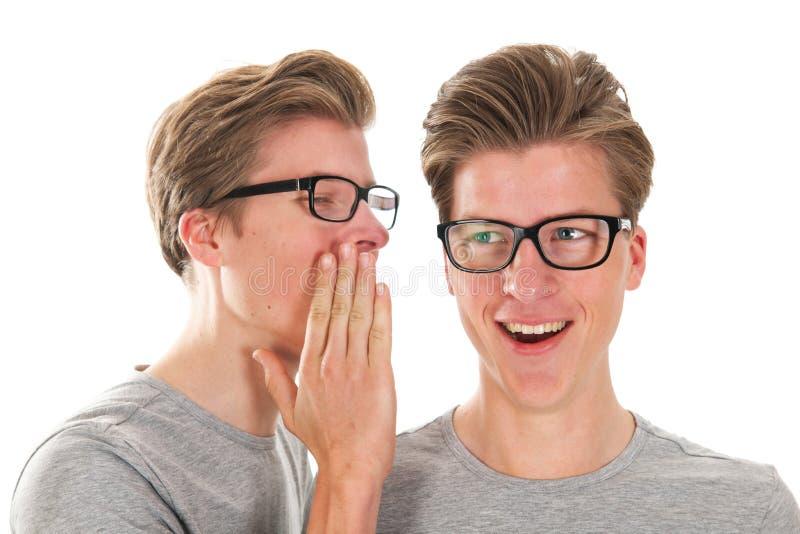Bavardage par des jumeaux photographie stock