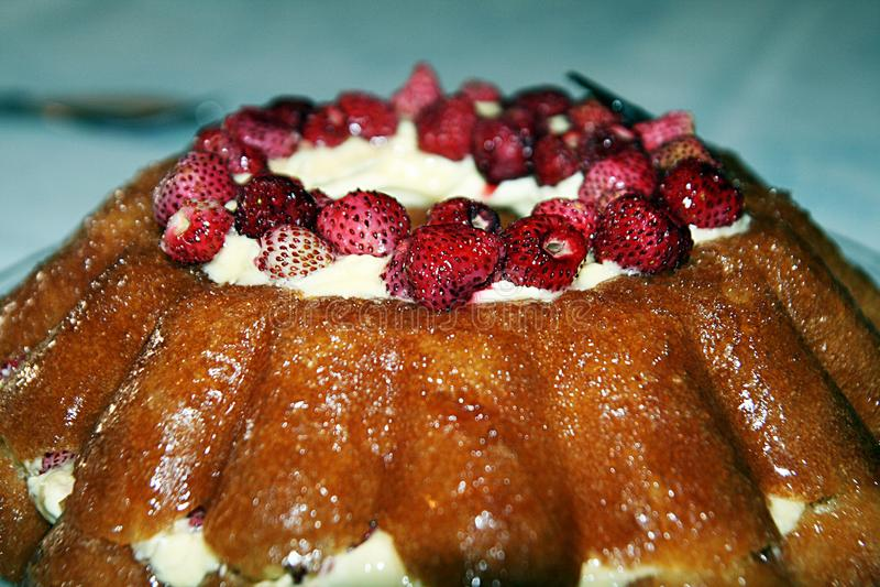 Bavarese蛋糕 库存照片