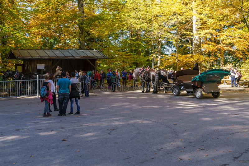 Bavaria Niemcy, Październik, - 15, 2017: Turyści jedzie w koniu c fotografia stock