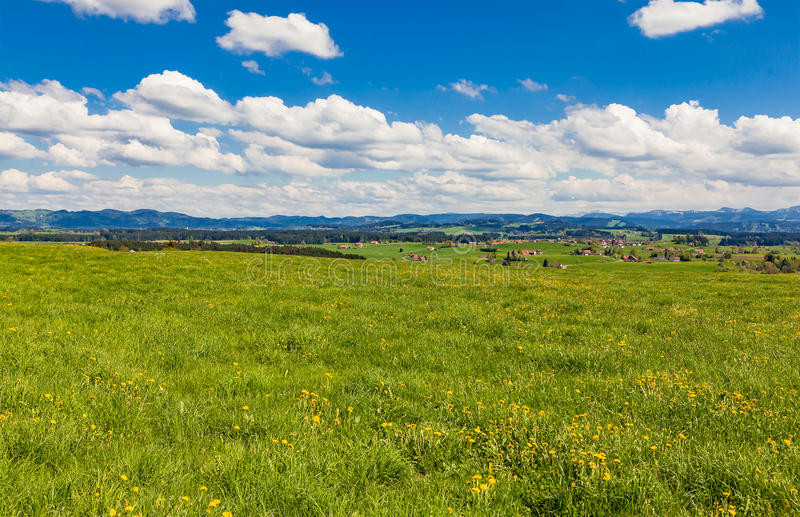 Bavarian meadow royalty free stock photography