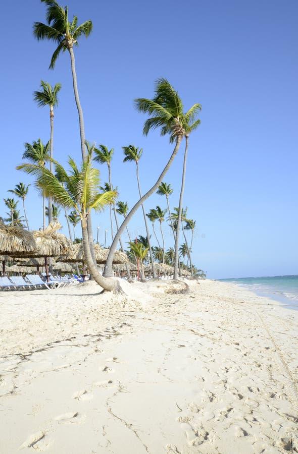 Bavaro plaża w Punta Cana w republice dominikańskiej zdjęcie royalty free