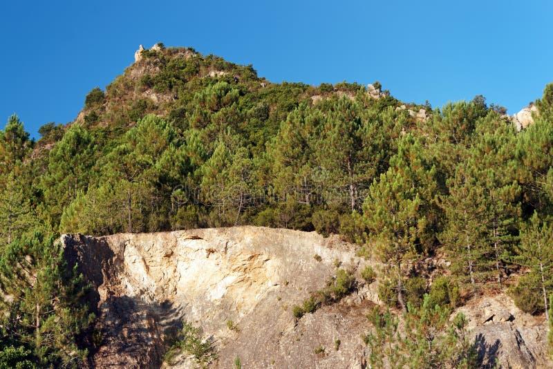 Bavella山在可西嘉岛海岛 库存照片