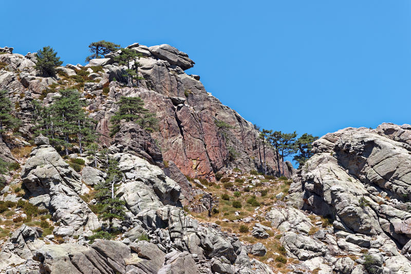 Bavella山岩石在可西嘉岛 库存照片