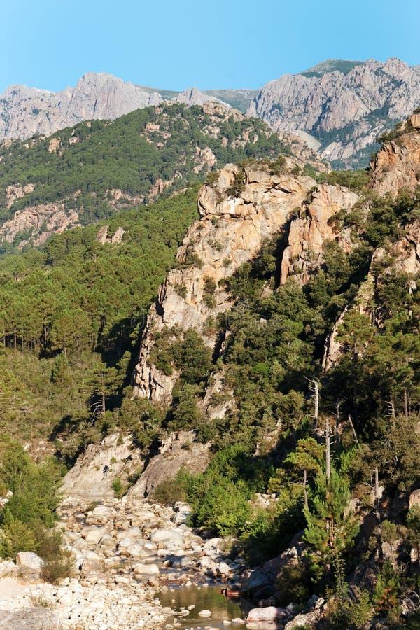 Bavella-Berg und solenzara Fluss in Korsika-Insel lizenzfreie stockbilder