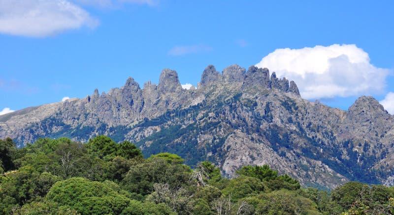 Bavella in Korsika lizenzfreies stockbild