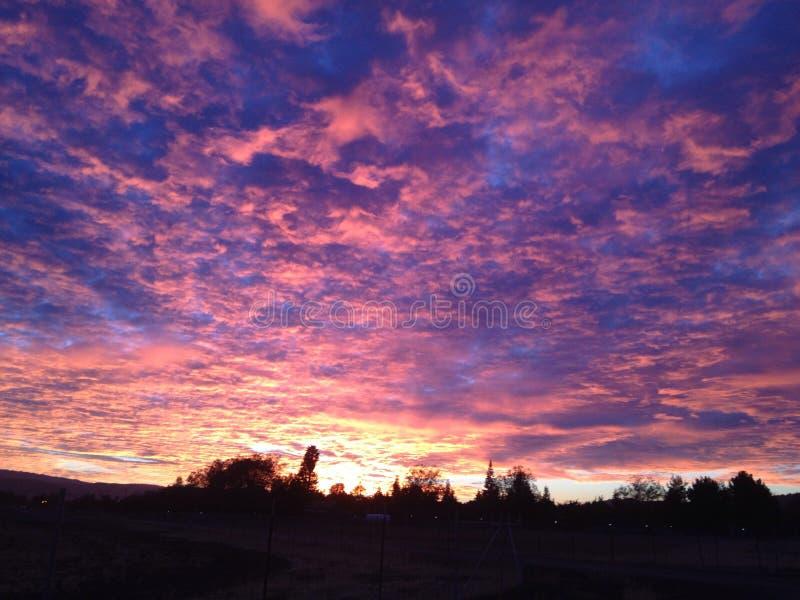 Bawełnianego cukierku wschodu słońca niebo zdjęcia royalty free
