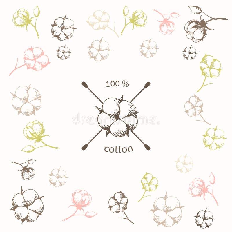 Bawełniany kwiat z krzyżującymi bawełnianymi mopami jak royalty ilustracja