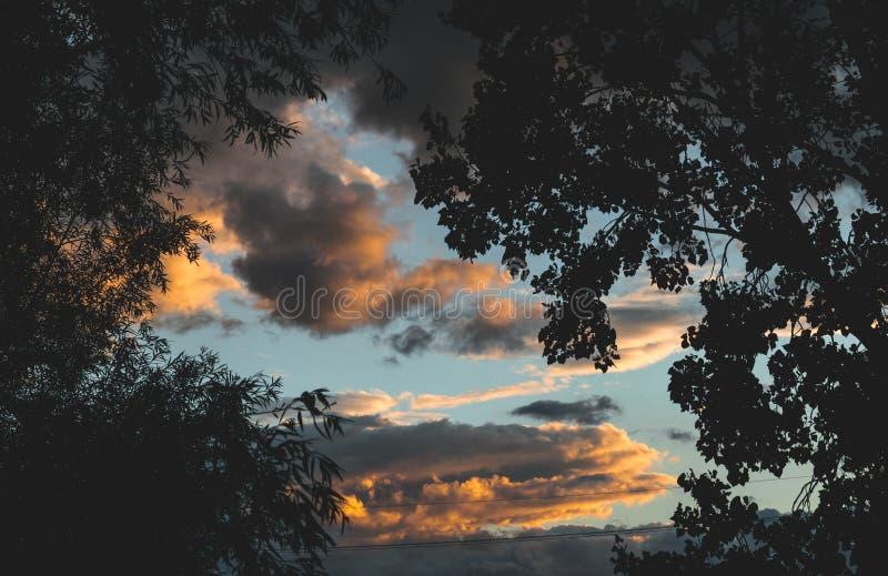 Bawełniany niebo fotografia royalty free