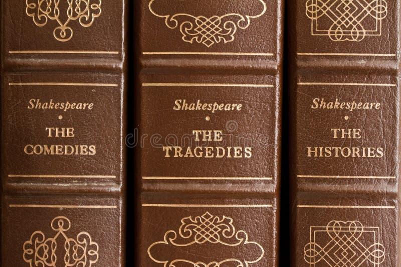 bawić się Shakespeare zdjęcie royalty free