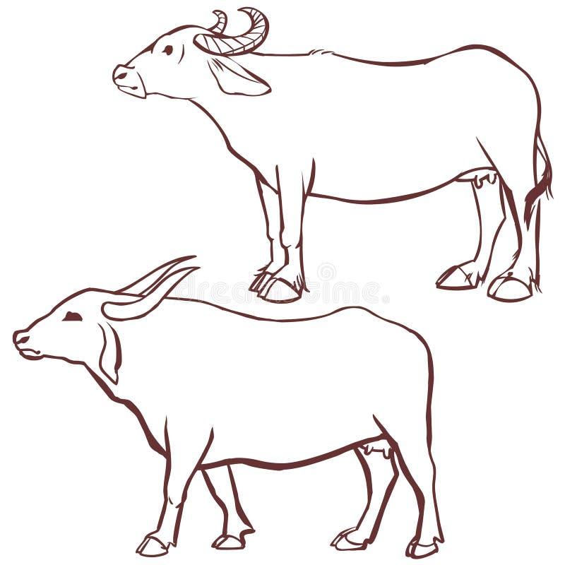 Bawoli krowa kontur royalty ilustracja