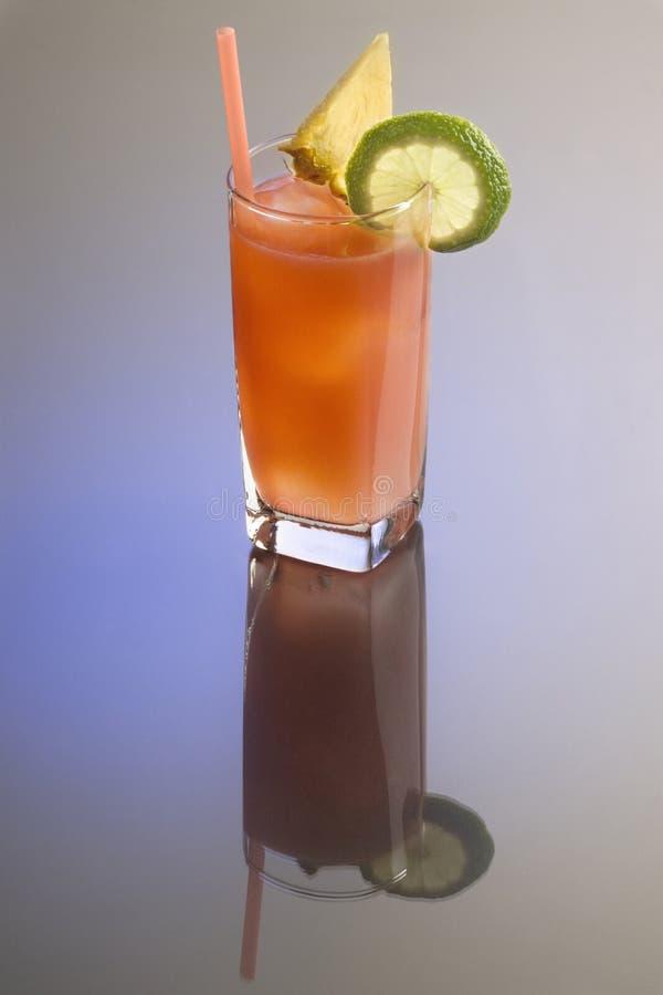 Bay Breeze Cocktail Royalty Free Stock Photos