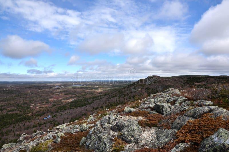 Bay Bulls Landscape Royalty Free Stock Image