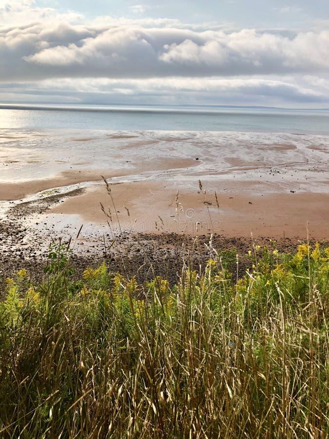 Bay of Fundy Beach stock photos
