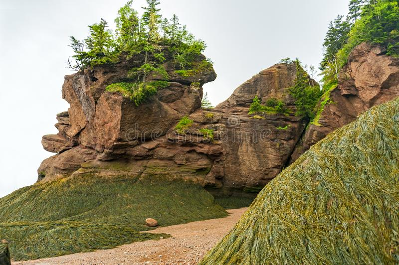 Bay of Fundy, Canada. The Bay of Fundy in Canada with the highest tides on earth is one of the natural wonders of the world royalty free stock photography
