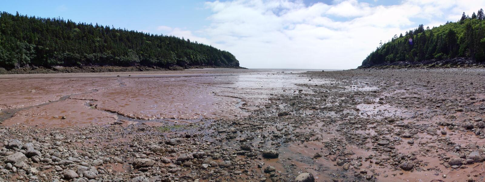 Bay of Fundy National Park royalty free stock image