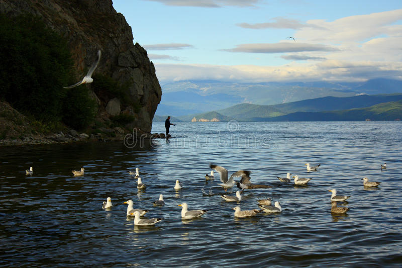 Bay of Lake Baikal royalty free stock photos