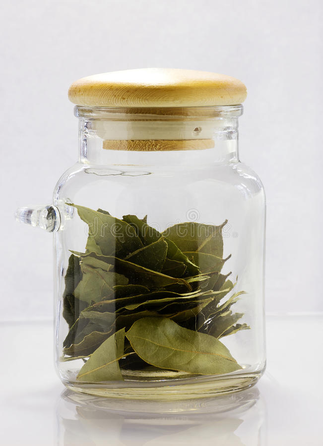 Bay Leaf Stock Image