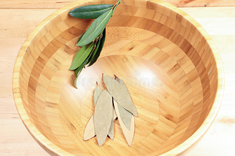Bay leaf herb spice royalty free stock photo