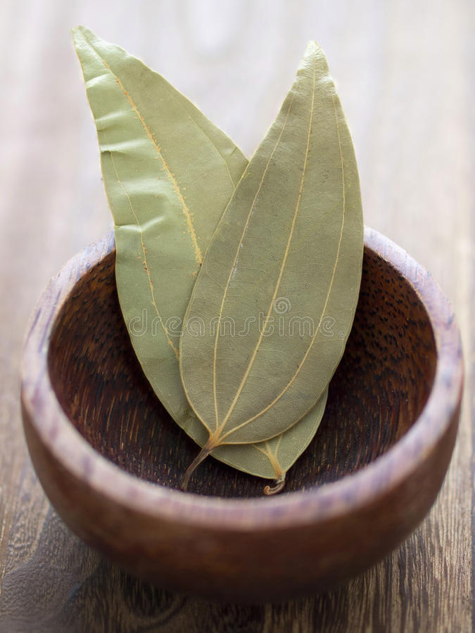 Bay Leaves Stock Photography