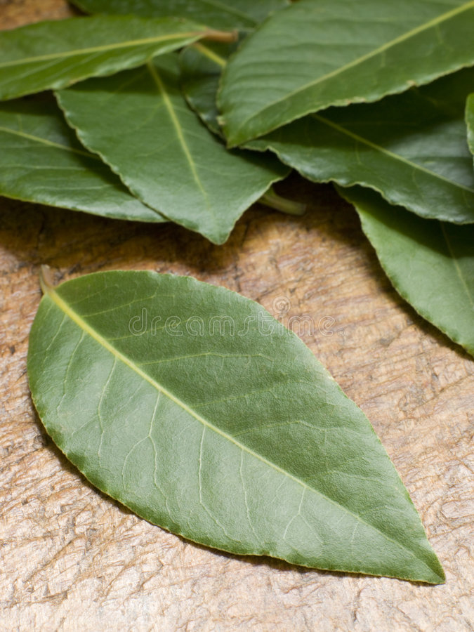 Bay Leaves On Chopping Board stock photography