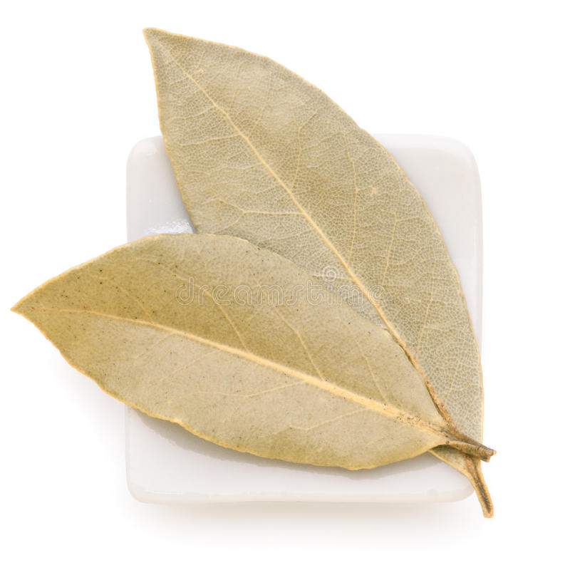 Bay Leaves in a white bowl on white background. stock image