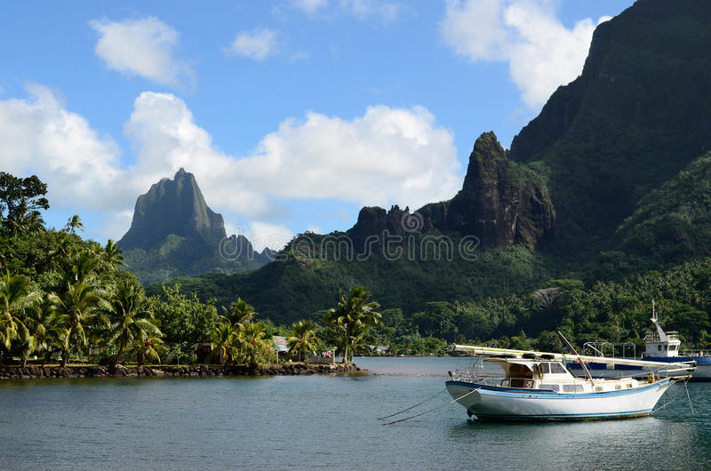 Bay in tropical Moorea royalty free stock images